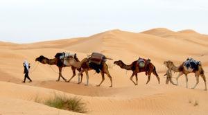 tunisie sud voyage